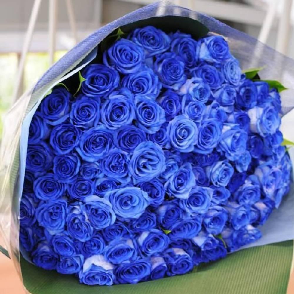 Картинка синяя роза букет