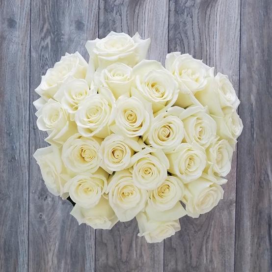25 Белых Роз Эквадор (60 см.)