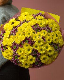 31 Разноцветная Хризантема Кустовая
