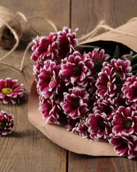 5 Фиолетовых Хризантем