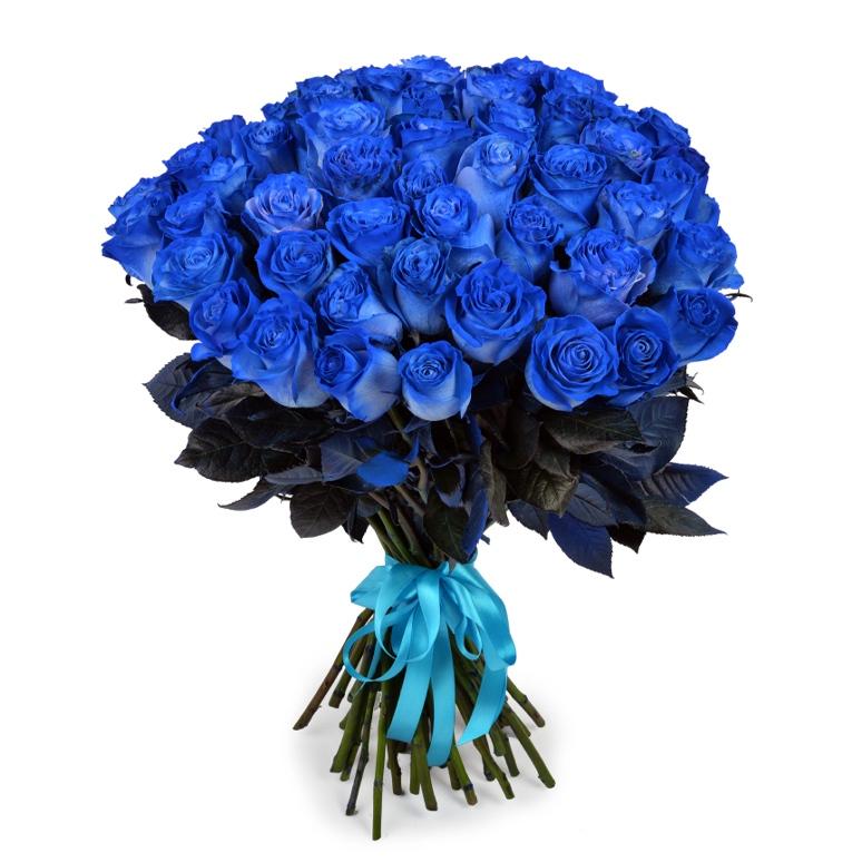 огромные букеты синих роз картинки ниши стене