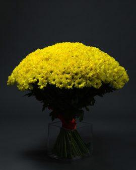 65 Желтых Хризантем Кустовых Ромашка