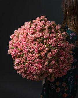 75 Розовых Роз Кустовых