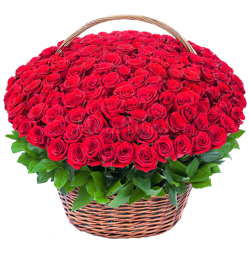 Розы цветы в корзинке картинки