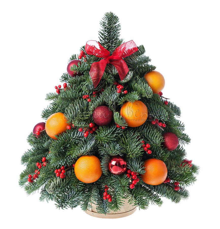 елка с фруктами картинка